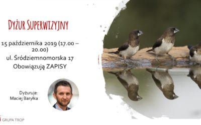 Dyżur superwizyjny – 15.10.2019, 17.00-20.00