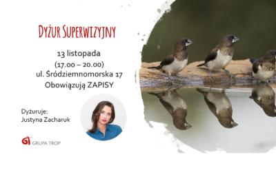 Dyżur Superwizyjny – 13.11.2019, 17.00-20.00