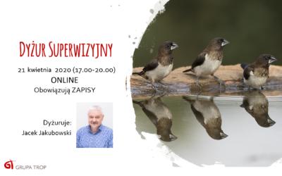 Dyżur superwizyjny online – 21.04.2020, 17.00-20.00