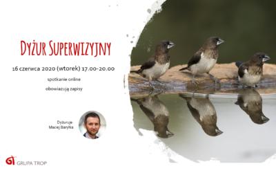 Dyżur superwizyjny online – 16.06.2020, 17.00-20.00